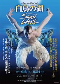 Swan_lake_11