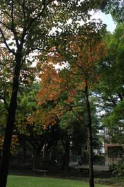 2014101409_4