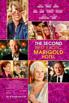 The_second_best_exotic_marigold_hot